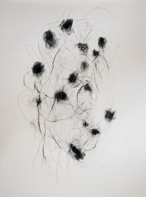 """""""Bouquet"""", 2010, mine de plomb sur papier, 42 x 30 cm."""