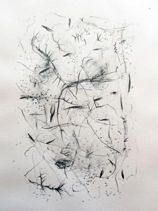 """""""Jardin"""", 2010, mine de plomb sur papier, 42 x 30 cm."""