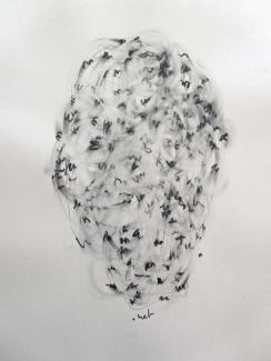 """"""".net"""", 2010, mine de plomb sur papier, 42 x 30 cm."""