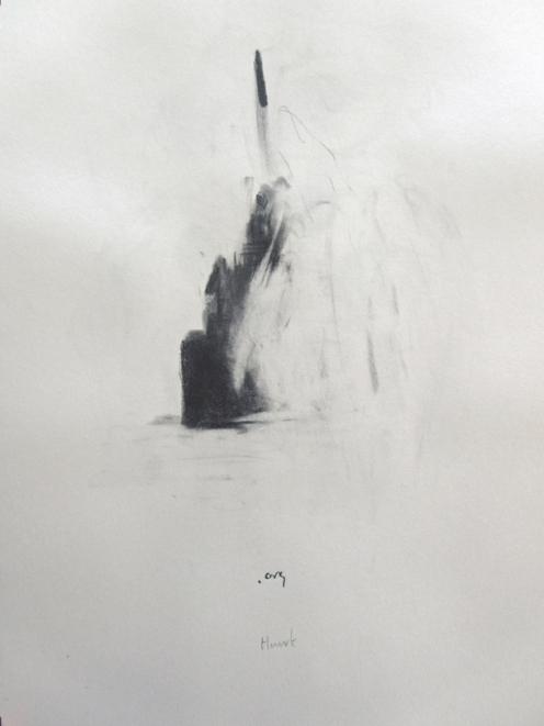 """"""".org"""", 2010, mine de plomb sur papier, 42 x 30 cm."""