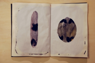 Cahier 3, 2010 17