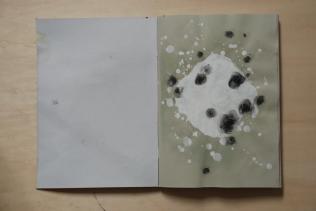 cahier 06, 2010 02