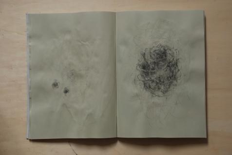 cahier 06, 2010 05