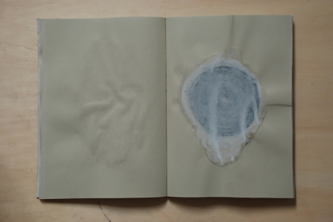 cahier 06, 2010 10