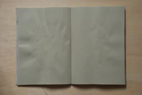 cahier 06, 2010 11
