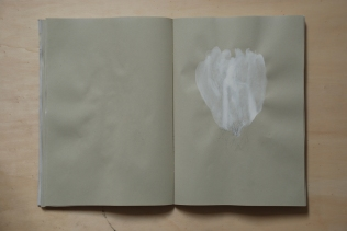 cahier 06, 2010 12