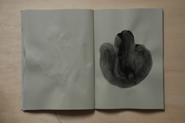 cahier 06, 2010 29