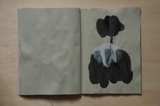 cahier 06, 2010 36