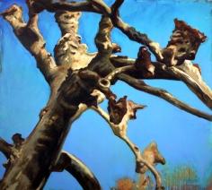 """""""Platane"""", 1994, huile sur toile, 170 x 190 cm"""
