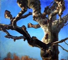 """""""Platane"""", 1995, huile sur toile, 170 x 190 cm"""