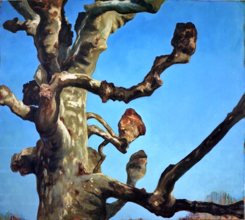 """""""Platane"""", 1997, huile sur toile, 170 x 190 cm"""