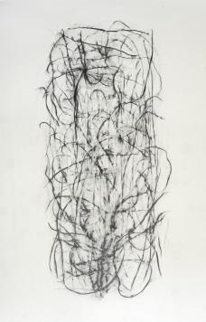 2010, Mine de plomb sur papier, 60 x 42 cm