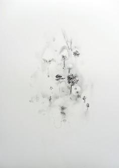 """""""Jardin"""" 2019, mine de plomb sur papier, 70 x 50 cm."""